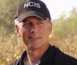 Seriálové osudy: NCIS