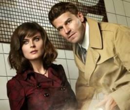 Fox: Kdy se rozloučí Bones, Following, Glee a další?