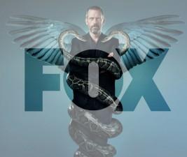 Nejlepší z nejlepších: Fox