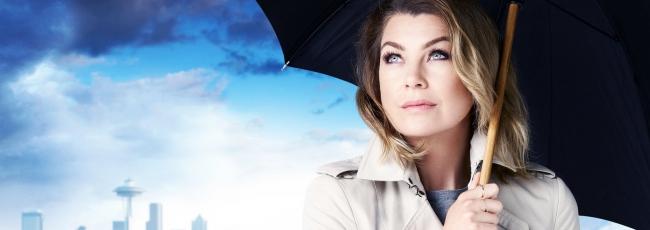 Chirurgové (Grey's Anatomy) — 12. série
