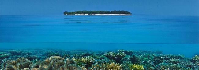 Velký bariérový útes (Great Barrier Reef)