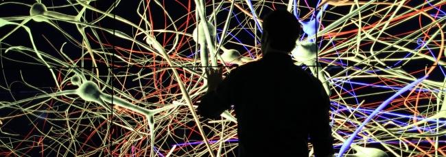 Cesta do hlubin mozku (Brain with Dr. David Eagleman, The)