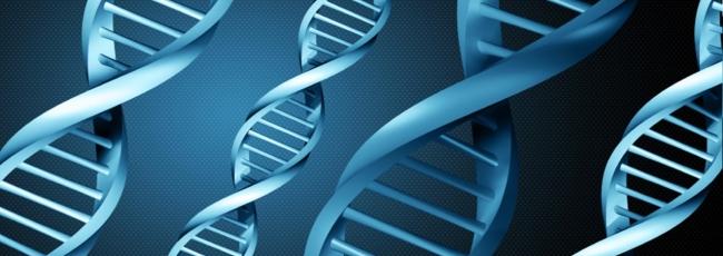 DNA (DNA)