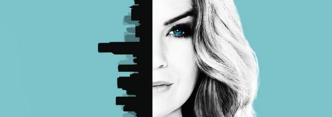 Chirurgové (Grey's Anatomy) — 13. série