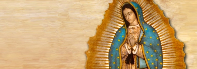 La rosa de Guadalupe (La rosa de Guadalupe)