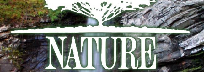 Nature (Nature)