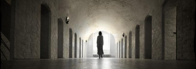 Paranormální jevy (Paranormal Survivor)