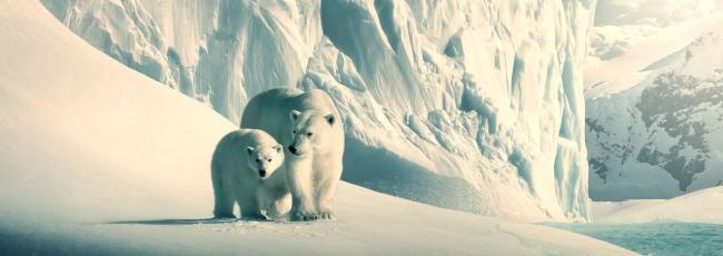 Our Planet (Our Planet) — 1. série