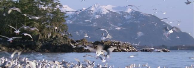 Fascinující proměny přírody (Nature's Great Events) — 1. série