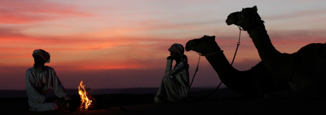 Wild Arabia (Wild Arabia) — 1. série
