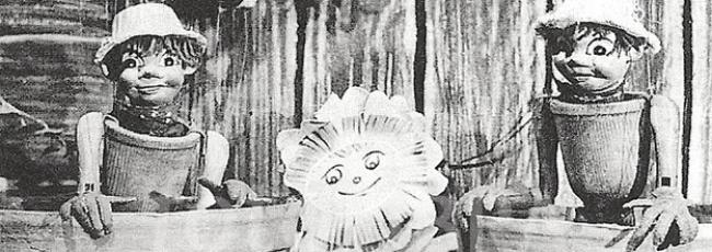 Flower Pot Men (Flower Pot Men)