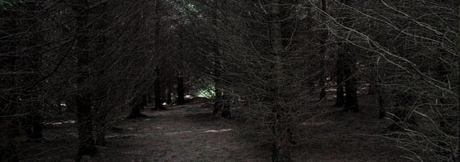 Království temnot (Dark Realm) — 1. série