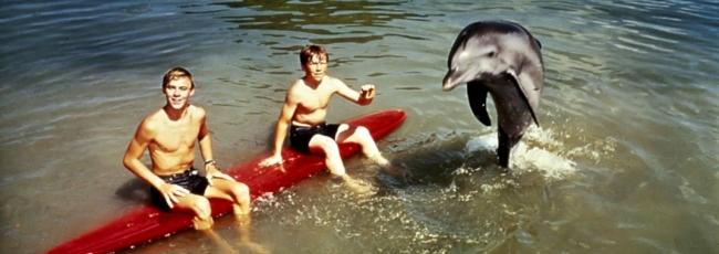 Můj přítel delfín (Flipper) — 1. série